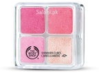 The_Body_Shop_Shimmer_Cube_Palette_Pink__93262.1411130398.500.750.jpg